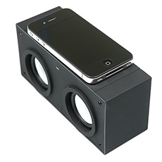 Induction speakers Dialog AC-70I