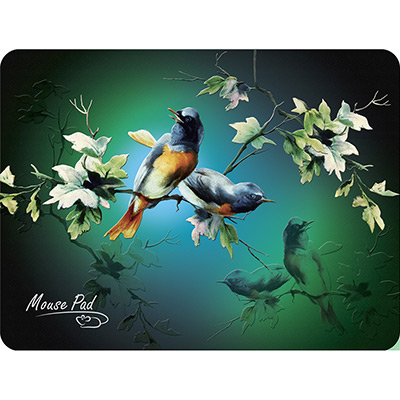 Mouse pad PM-H17 Bird main photo